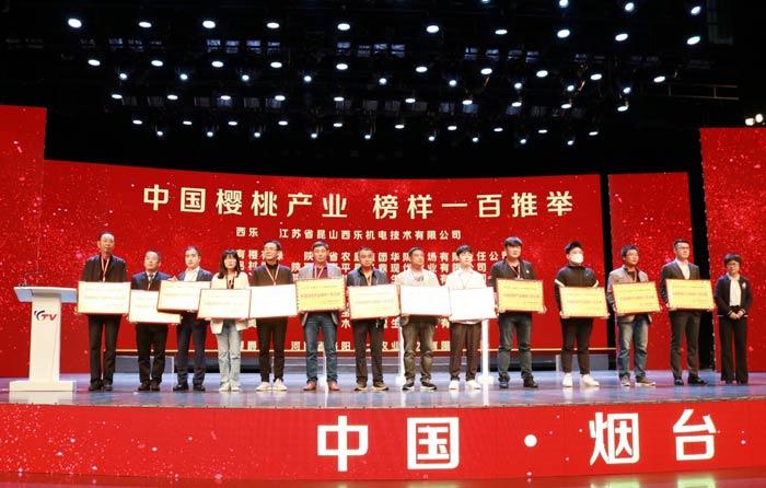 2020年中国樱商大会 顺丰发布樱桃邮递标准助力产业链升级