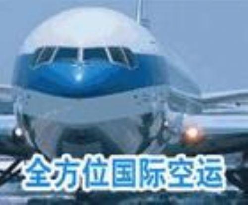 山东青岛最好的国际物流公司排名电话